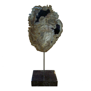 Petrified Wood Sculpture On Black Marble Base