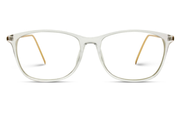 Arden Classic Blue Light Glasses- Clear