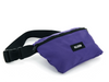 BG067-500 | PALLADIUM FANNY PACK | PURPLE