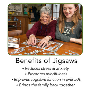 Reduces stress & anxiety, promotes mindfulness, improves cognitive function in over 50's, brings the family back together