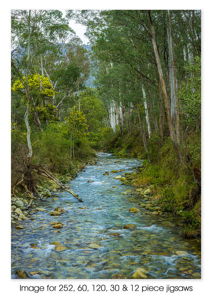 Alpine Forest Creek, VIC