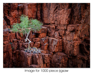 Ormiston Gorge, West MacDonnell Ranges NT