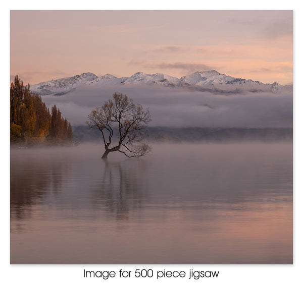 Lake Wanaka Tree, NZ