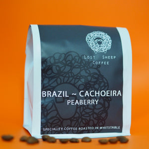 Brazil ~ Cachoeira ~ Peaberry