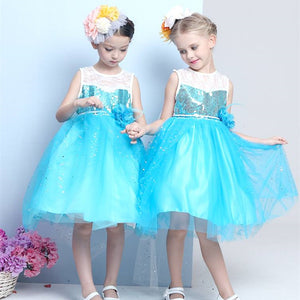 2-12Y  Premium Quality Elsa Princess Dress  (LGD1-002)