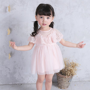 0-3Y  Baby Girls Lace Princess Tulle Dress (BGQ1-010)