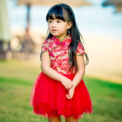 1-6Y  Girls Red Floral Qipao Tulle Dress (CSDD-013)