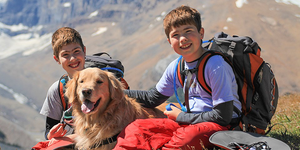 Taking Your Furry Friend Camping? Things to consider when taking your dog camping
