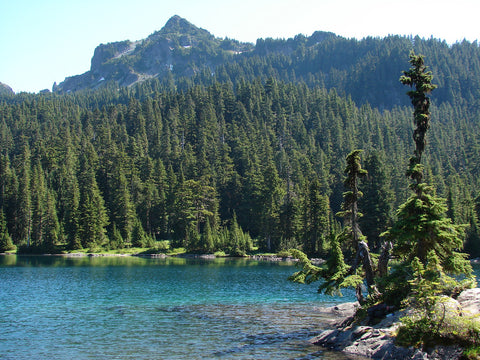 Mowich Lake in Mt Rainier National Park Washington