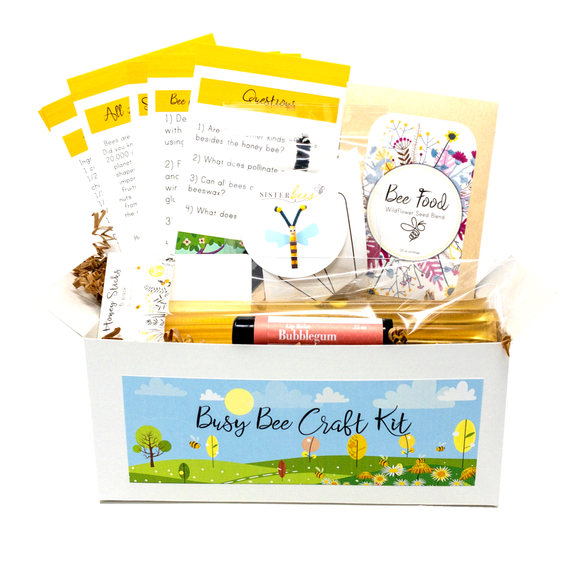 Busy Bee Kidz Kit