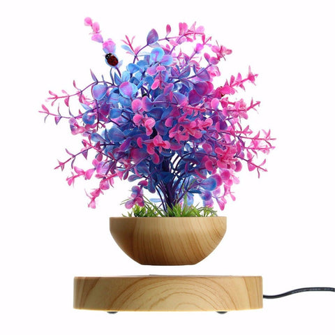 Air Bonsai - Magnetic Levitating Air Floating Planter Pot