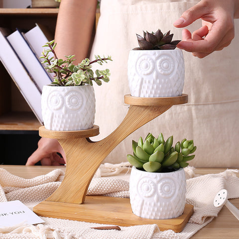Owl Planter Pot (With Bamboo Shelf)