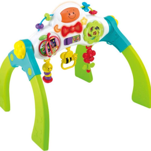 Winfun Baby Musical Gym Grow with Me Toy