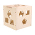 products/Wooden_Shape_Intelligence_Box_2.jpg
