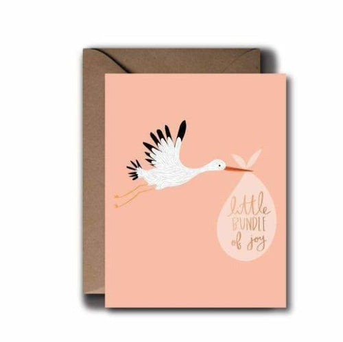 Girl Stork Baby Greeting Card