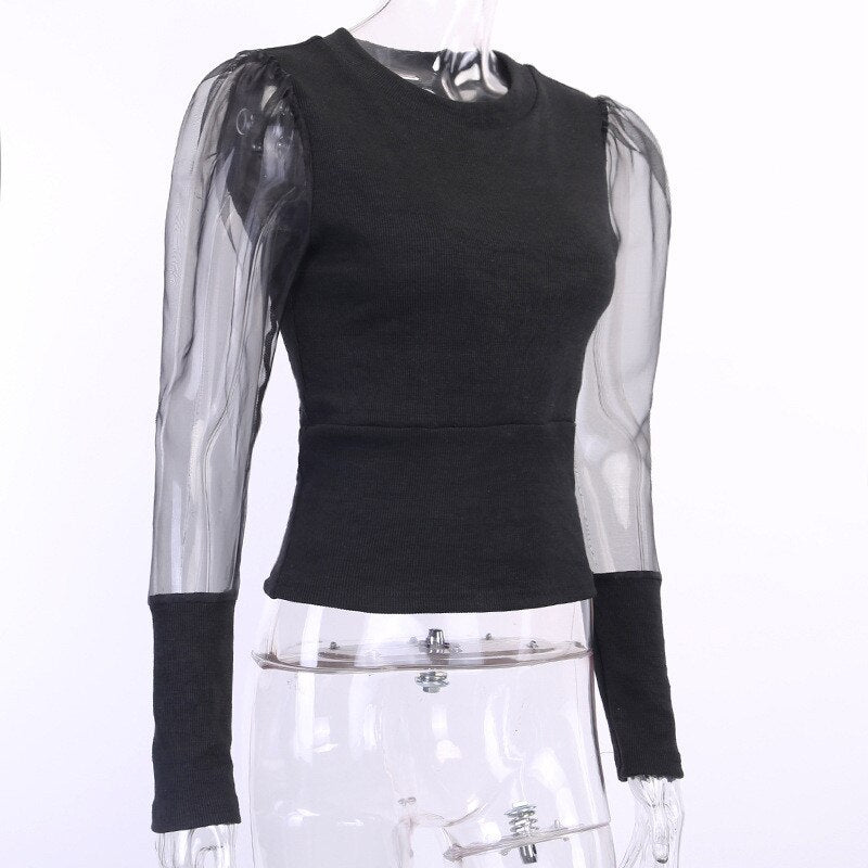 Sheer Sleeve Cropped T-shirts