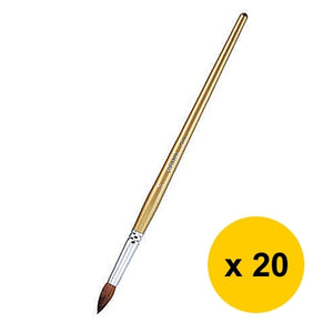 Pentel Round Type Brush (20pcs)