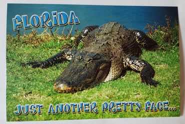 Florida Post Cards