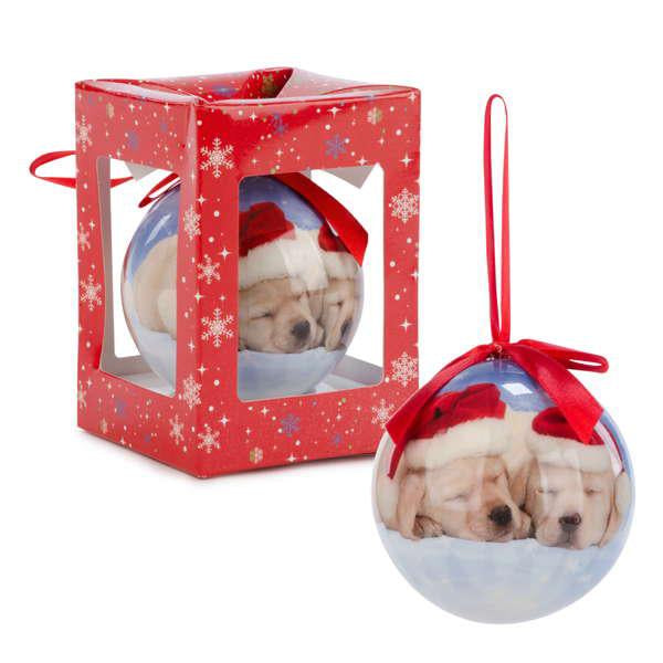 Boule lumineuse chiens