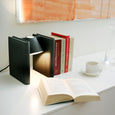 Mr. Ed Book-end Lamp