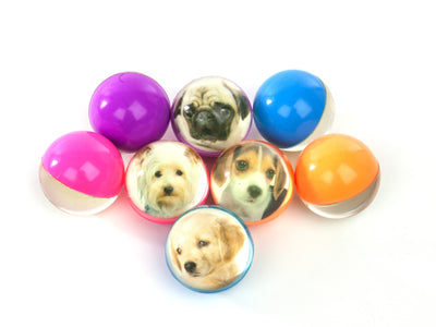 45mm Puppy Pic Super Ball
