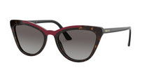 Prada PR 01VS CATWALK 3200A7 HAVANA/RED Size 56