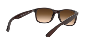 Ray Ban RB4202 ANDY 607313 MATTE BROWN Size 55