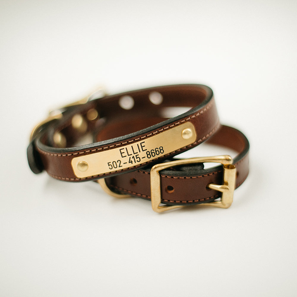 Bridle Nameplate Dog Collar