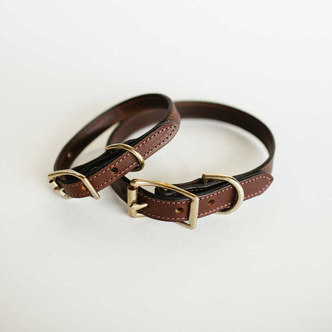 Bridle Dog Collar