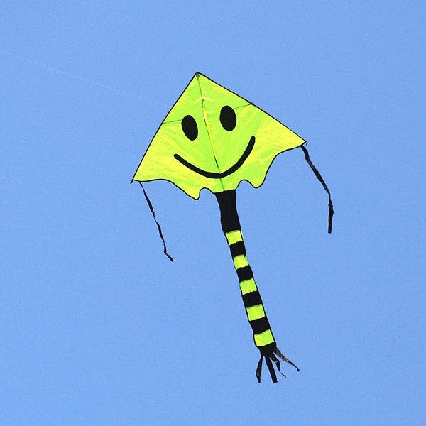 Four Color Smiley Kite Sports Beach Kite
