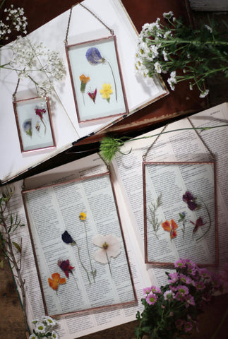 Wallflowers, wallhangings, flowers, pressed flowers, vintage, wildbirdstudio