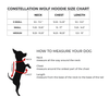 size chart for hoodie with wolf print