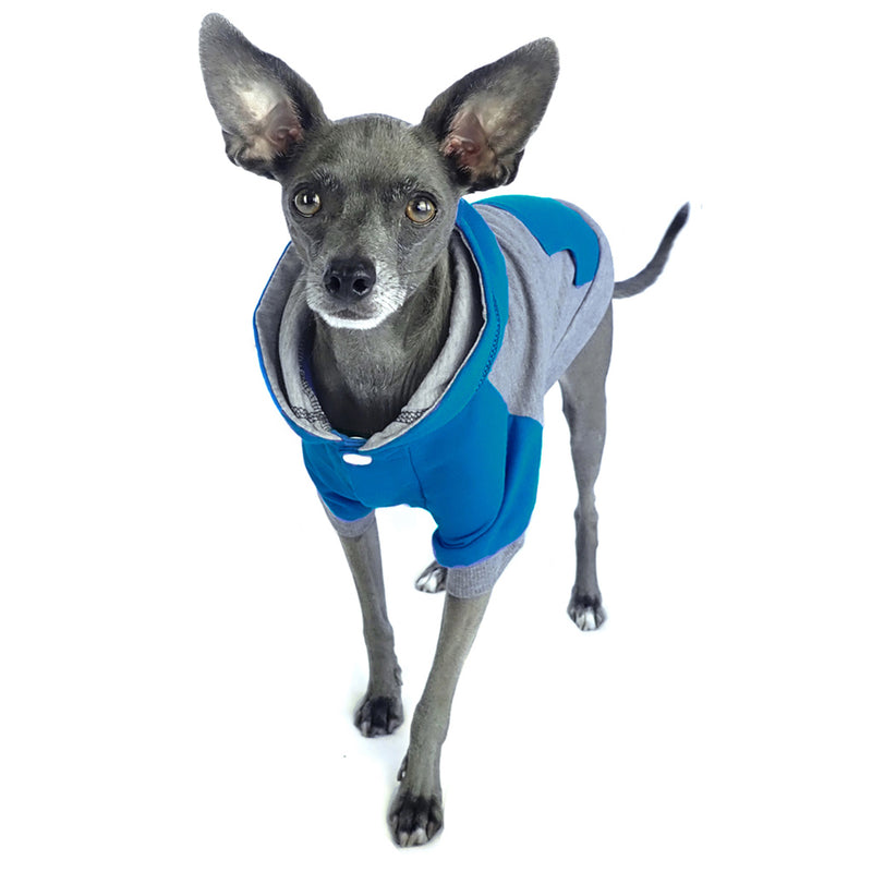Color Block Dog Hoodie Raglan Style w/ Pocket for little dogs