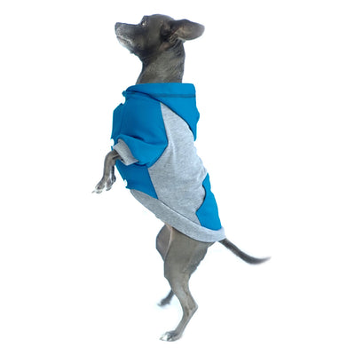 raglan style turquoise gray dog hoodie side view on standing dog