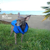 Hlue fleece dog jacket on dog in park