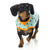 Tucson Cactus Wrap Vest for Dogs