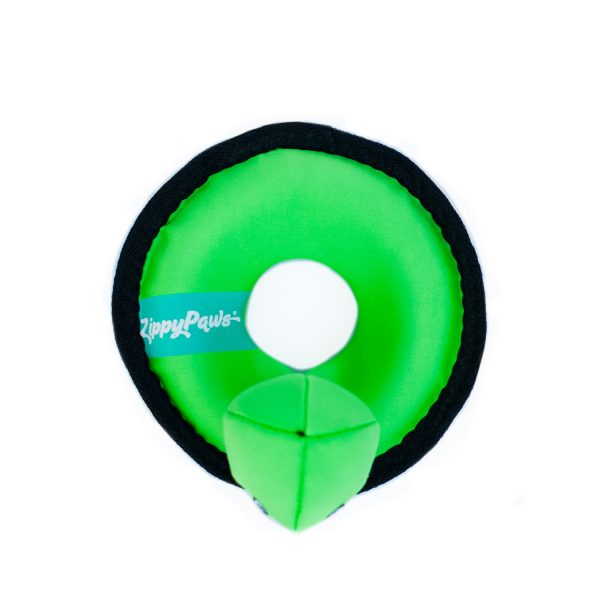 Turtle Outdoor Floating Dog Toy