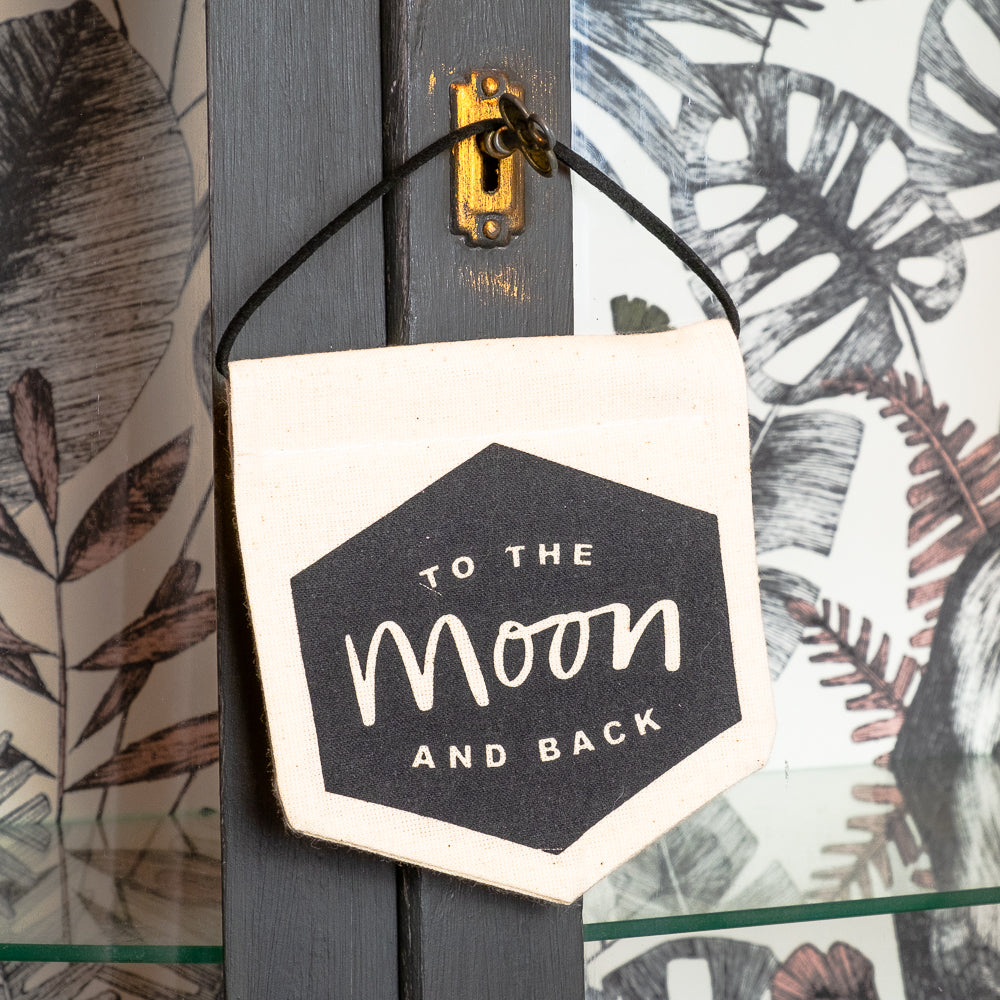 Mini hanging banner To the moon and back