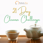 21 Cleansing Day Programme