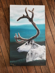 Spring Caribou - Limited Edition Prints