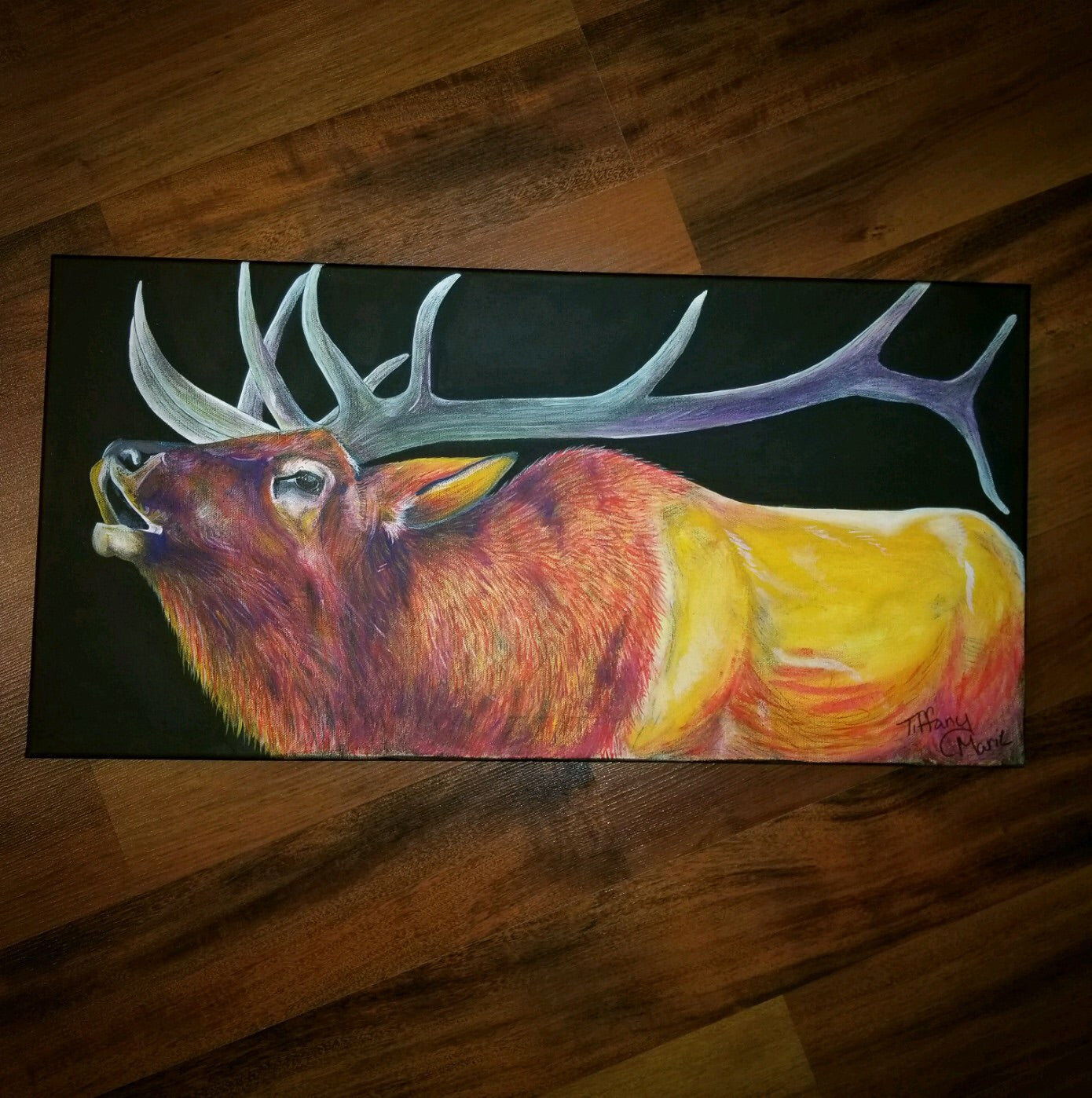 Bugling Elk - Limited Edition Prints - Tiffany Marie Art
