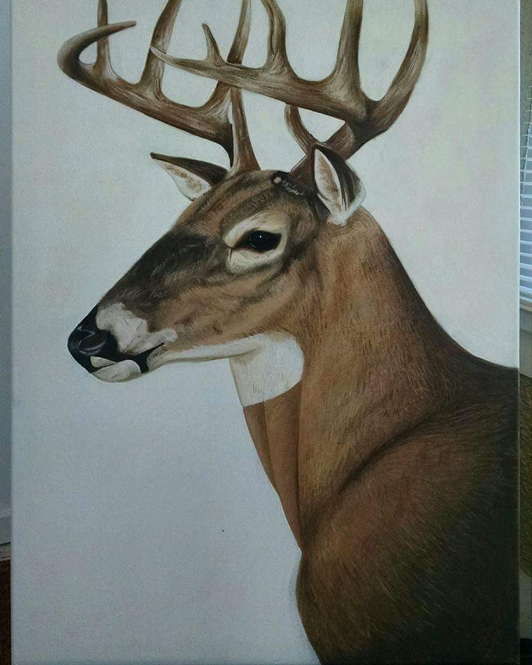 Whitetail - Original Painting