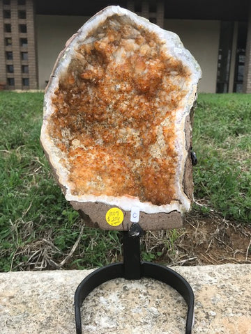 Citrine Geode Cluster with Stand - Brazil