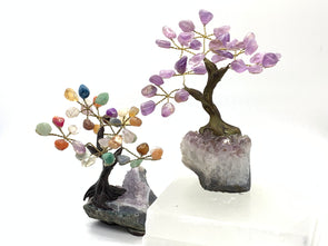 Gemstone Trees on Amethyst