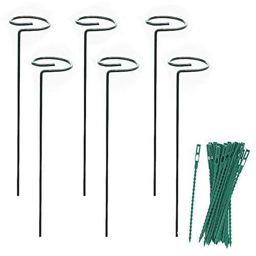 MR.FOAM Plant Support Stake,6 Pack Peony Cages and Supports Garden Stakes for Plant Twist Ties for Flowers Amaryllis Tomatoes Peony Lily Rose (15.92.4 inch).