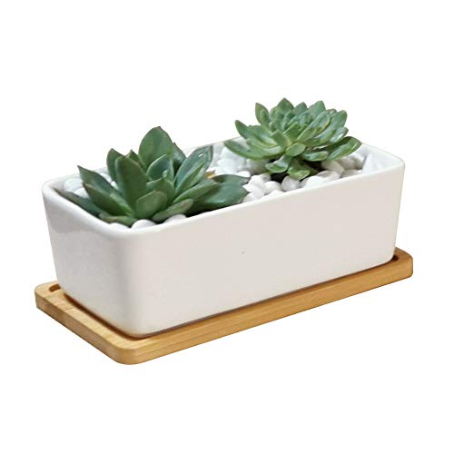 Lanker 6.5 Inch Rectangle White Ceramic Succulent Planter Pot Decorative Cactus Plant Pot Flower Container with Bamboo Tray (Rectangle 6.5 Inch)