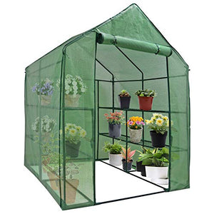 Mini Walk-in Greenhouse Indoor Outdoor -2 Tier 8 Shelves- Portable Plant Gardening Greenhouse (57L x 57W x 77H Inches), Grow Plant Herbs Flowers Hot House