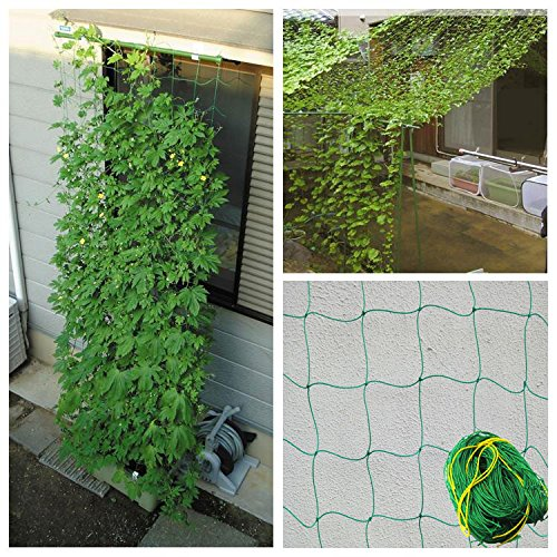 GreeGardening Durable Nylon Trellis Net Netting Plant Support for Climbing Plants 5.9Ft x 11.8Ft