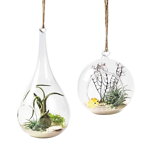 Mkono 2 Pack Glass Hanging Planter Air Plant Terrarium Home Decorations Xmas Gift for Succulent Candles, Globe and Teardrop