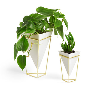 Umbra Trigg Desktop Planter Vase & Geometric Container-for Succulent, Air, Mini Cactus, Faux Plants and More, Desk, White/Brass